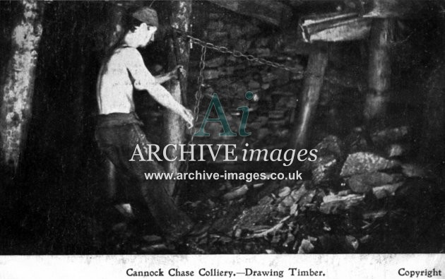 Staffordshire Mining Cannock Chase colliery drawing timber c1905 CMc