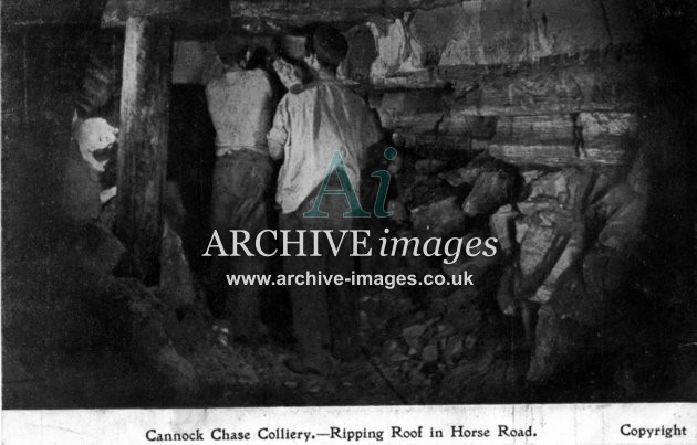Staffordshire Mining Cannock Chase colliery ripping roof in horse road c1905 CMc