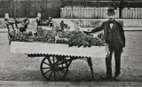 Edwardian Costermonger's Barrow, Fruit Seller MD