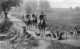 Rural Hunting With Hounds Scene MD