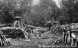 Charcoal Burning, New Forest c1912