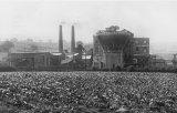 Moor Green Colliery circa 1930