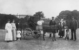 Edwardian Donkey Cart & Group MD