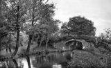 Monmouthshire Canal, nr Pontypool
