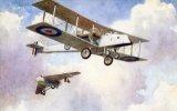 Pterodactyl Biplane & Monowing