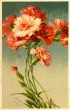 Christina Klein, Flowers M&B Serie 1206