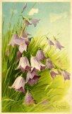 Christina Klein, Flowers M&B Serie 1241
