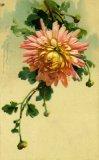 Christina Klein, Tuck, Flowers