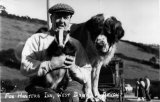 Devon Fox Hunters Inn West Down badger and border collie c1950 CMc.jpg