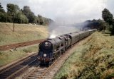 Merchant Navy No 35006 Peninsular & Oriental S.N. Co. passing Wilton Junction on 17.8.62